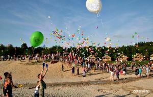 Camping De Paal bij Bergeijk: je hebt geen kind aan de kinderen