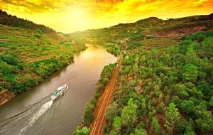 Ontdek de vallei van de Douro waar de druiven voor de portwijn groeien
