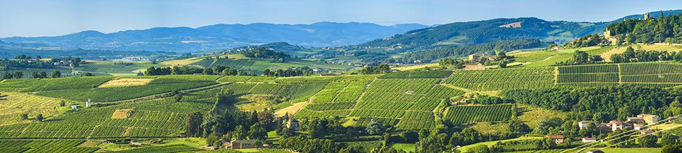 Rhône - Alps