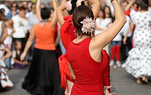 Flamencomuziek