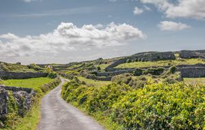 Het zuiden van Ierland