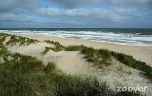Hoge golven op Vlieland