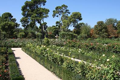 El Botanic
