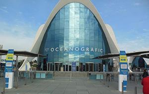 Onderwaterwereld: L'Oceanografic