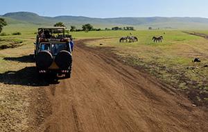 Ongerept Botswana