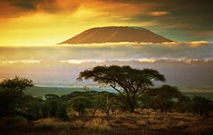 Eén met de natuur in Afrika