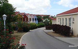 Fijn Vakantiepark Livingstone Jan Thiel Resort