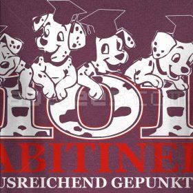 101 ABItiner