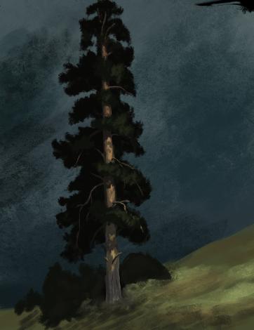Рисунок: дерево