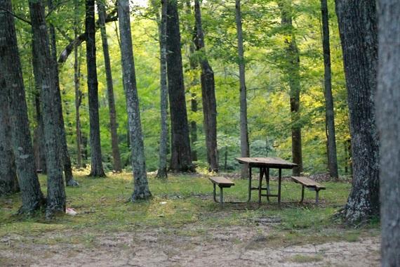 Campingplatz in Dresden