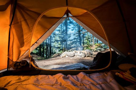 Camping France forêt