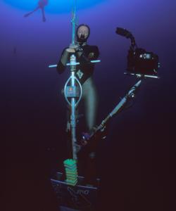 「Free diving NLT」の画像検索結果