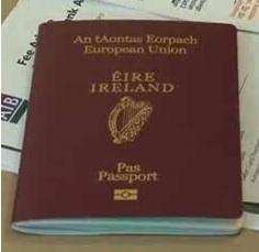Visto de residência irlandês