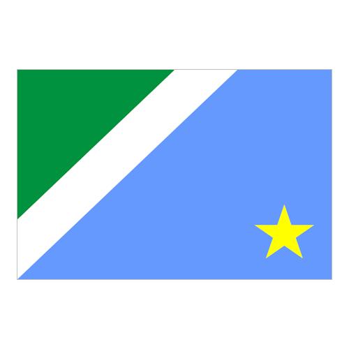 Bandiera de Mato Grosso do Sul