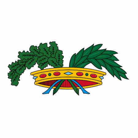 Logo Carbonia-Iglesias