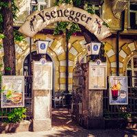 Ysenegger-picture