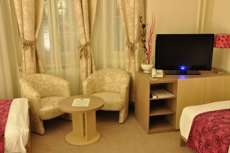 Studio Apartment Grof 4 Centar