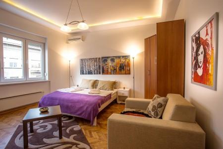 Studio Apartment France Centar