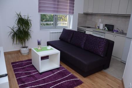 Dvosobni Apartman Nina Beograd Centar