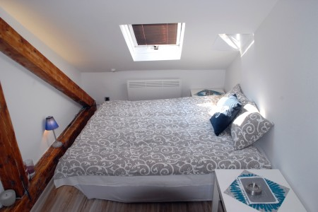 Studio Apartment Tanja Centar