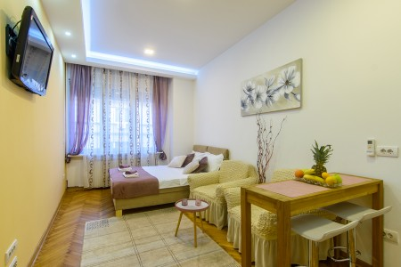 Studio Apartment Amelija Belgrade Center