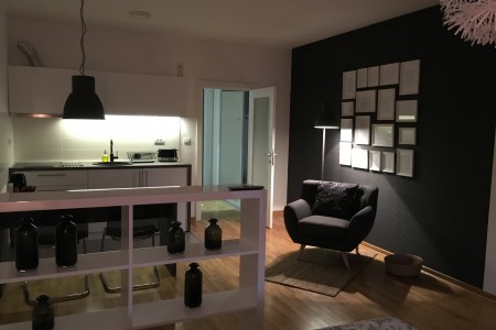 Studio Apartman Crno Beli Beograd Novi Beograd
