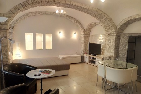 Studio Apartment Zemun Belgrade Zemun