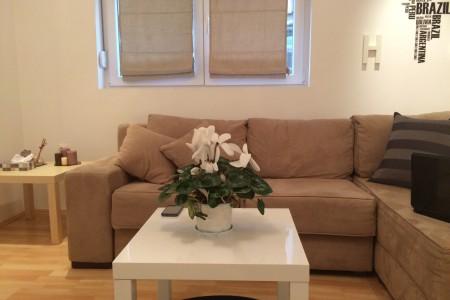 One Bedroom Apartment Biljana Belgrade Vracar
