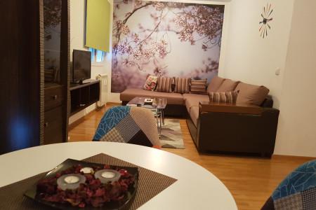 apartments beograd vozdovac apartment orhideja5