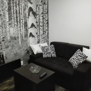 Studio Apartment Zebra Belgrade Vracar