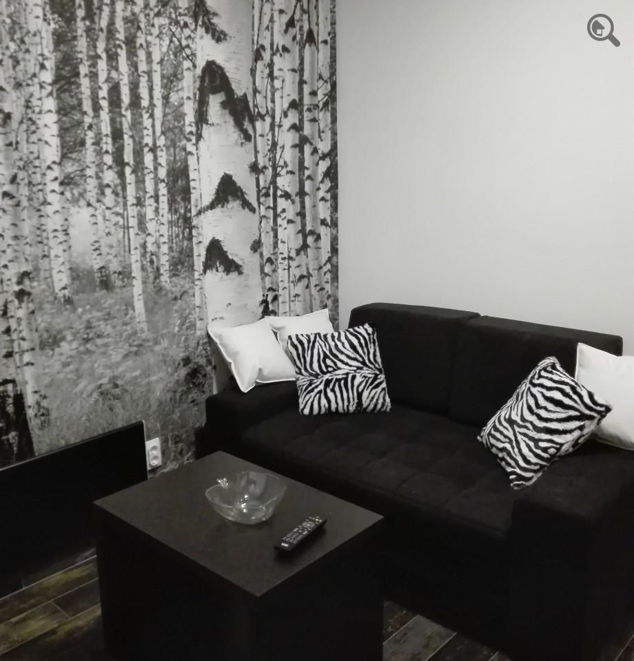 Stan , Beograd (grad) , Kratkoročno izdavanje | Studio Apartman Zebra Beograd Vračar