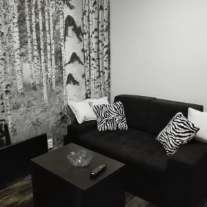 Studio Apartman Zebra Beograd Vračar