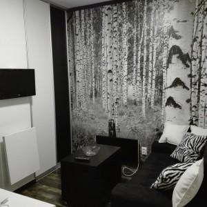 apartmani beograd vracar apartman zebra2