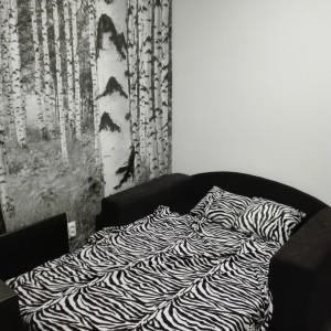 apartmani beograd vracar apartman zebra3