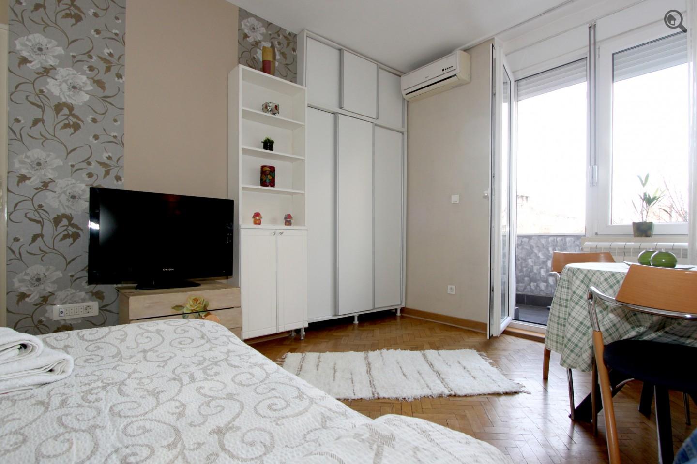 Studio Apartman Dejzi Beograd Centar