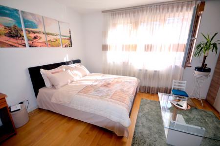 One Bedroom Apartment Mandarin Belgrade New Belgrade