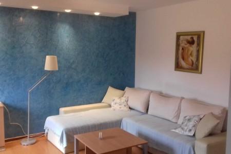 Three Bedroom Apartment Institut Belgrade New Belgrade