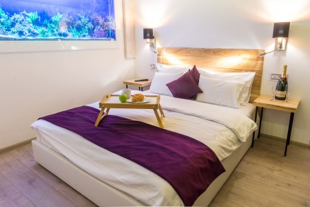 apartments belgrade vracar apartment royal gold2