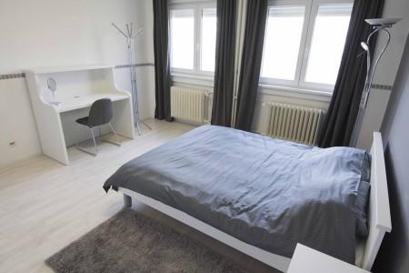 Two Bedroom Apartment Vracar Lux Belgrade Vracar