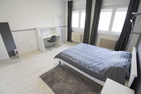 apartments belgrade vracar apartment vracar lux apartment3