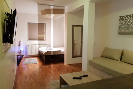 One Bedroom Apartment Beo River Belgrade Savski Venac
