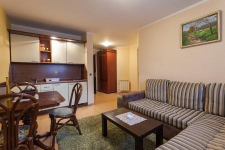 apartmani beograd planina apartman vila borova lux2