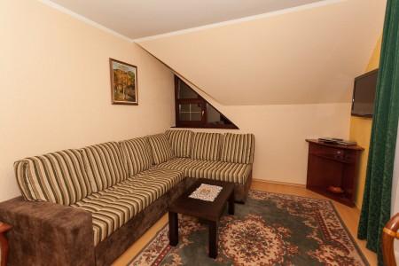 apartmani beograd planina apartman vila borova lux7