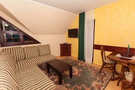 apartmani beograd planina apartman vila borova lux8