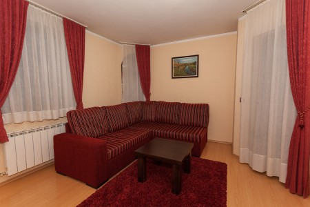 Dvosoban Apartman Vila Borova Lux 1 Zlatibor Planina Djurkovac