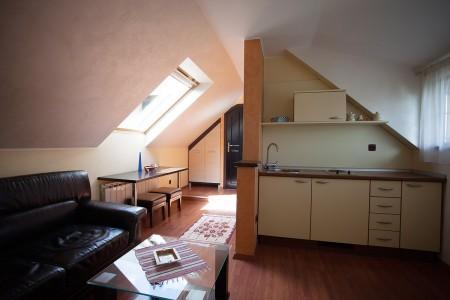 Jednosoban Apartman Vila Borova 2 Zlatibor Planina Djurkovac