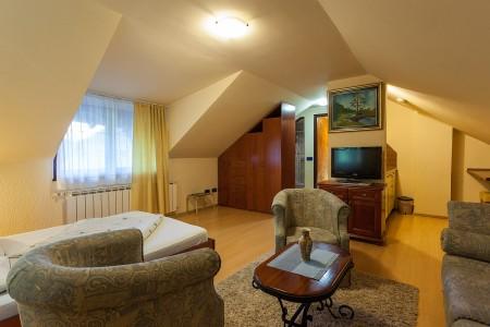 apartmani beograd planina apartman vila borova3