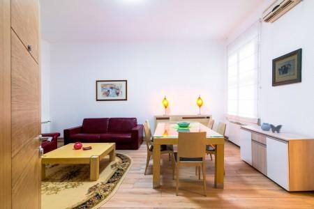 apartments belgrade vracar apartment top central 1 sm26