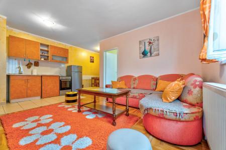 apartmani zlatibor planina apartman vostic8