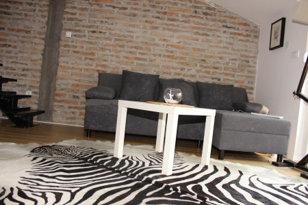 Two Bedroom Apartment Ilias Belgrade Vracar